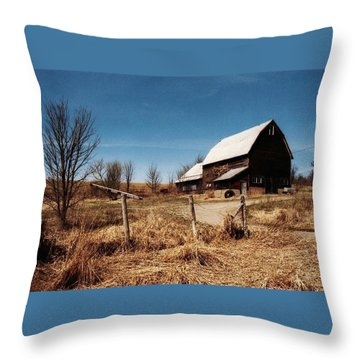 A Dry Autumn Throw Pillow