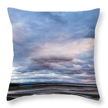 A Dry Jackson Lake Throw Pillow by Monte Stevens