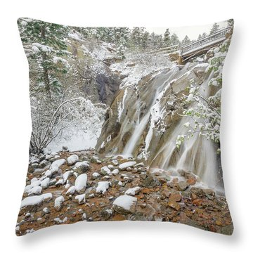 A Factitious Bridge In A Natural Environment  Throw Pillow by Bijan Pirnia