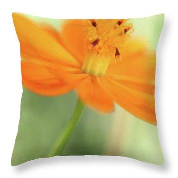 A Fair Lady Of The Plains Throw Pillow