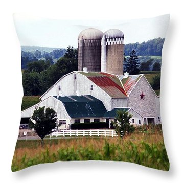 A Farmer's Paradise Throw Pillow
