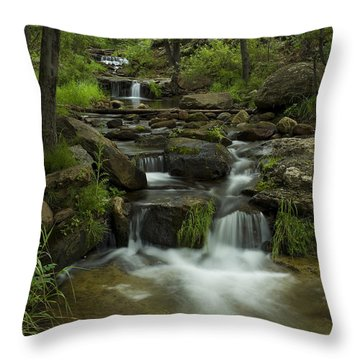 A Peaceful Place Throw Pillow by Sue Cullumber