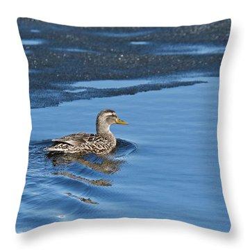 A Female Mallard In Thunder Bay Throw Pillow by Michael Peychich