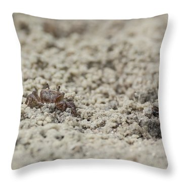 A Fiddler Crab In The Sand Throw Pillow