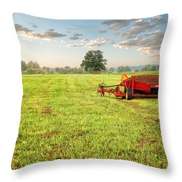 Throw Pillow featuring the photograph A Field At Sunrise by Lars Lentz