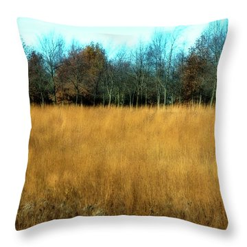 A Field Of Browns Throw Pillow