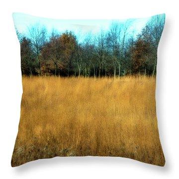 A Field Of Browns Throw Pillow
