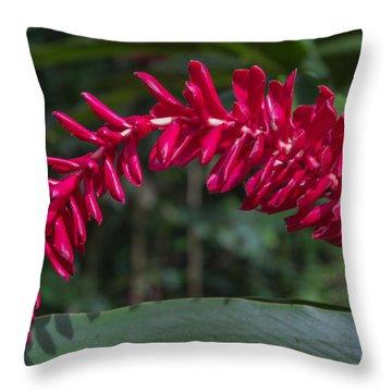 A Flair For Drama Floral Throw Pillow