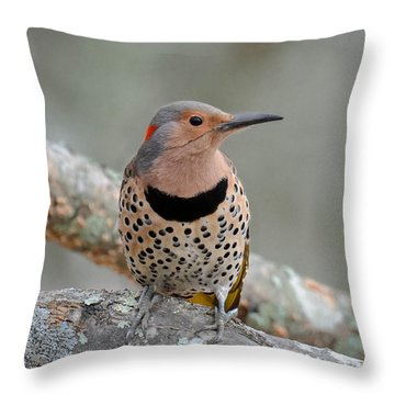 A Flicker Of Sunshine In Winter Throw Pillow