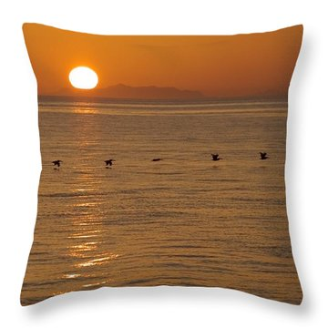 A Flock Of Brown Pelicans Flying Low Throw Pillow