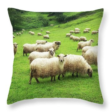 A Flock Of Sheep Throw Pillow