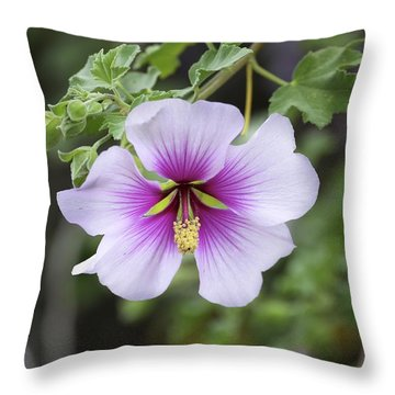 Symetric Beauty Throw Pillow