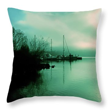 A Foggy Day At Log Boom Park On Lake Washington Throw Pillow