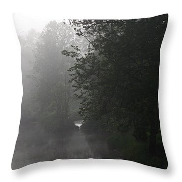 A Foggy Morning In Pennsylvania Throw Pillow