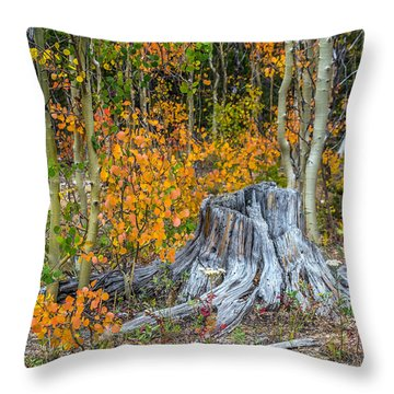 A Forest Of Color Throw Pillow