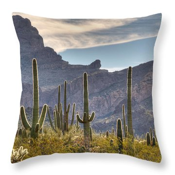 A Forest Of Saguaro Cacti Throw Pillow