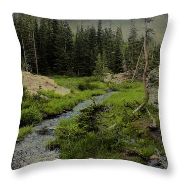 A Forest Of The Rockies Throw Pillow by Scott Kingery