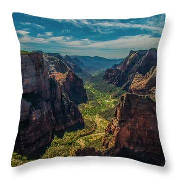 A Forever View Throw Pillow
