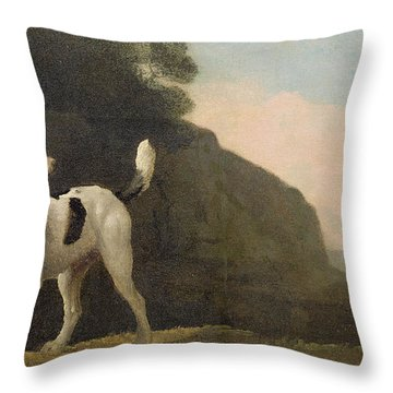 A Foxhound Throw Pillow by George Stubbs