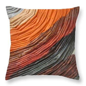 A Fraction Of Breakthroughs 6 Throw Pillow