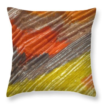 A Fraction Of Treasures 9 Throw Pillow