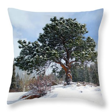 Throw Pillow featuring the photograph A Fresh Blanket Of Snow by Shane Bechler