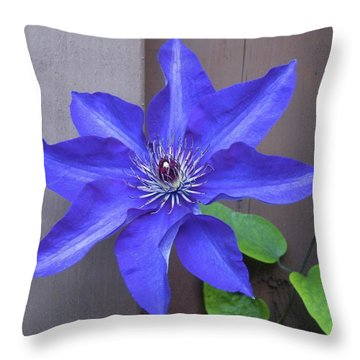 A Friend From Next Door Throw Pillow