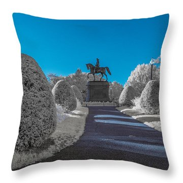 A Frosted Boston Public Garden Throw Pillow