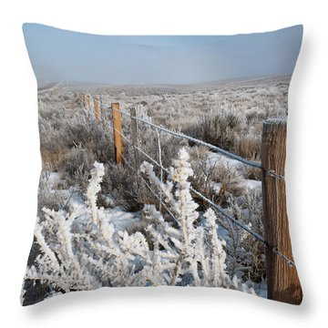 A Frosty And Foggy Morning On The Way To Steamboat Springs Throw Pillow