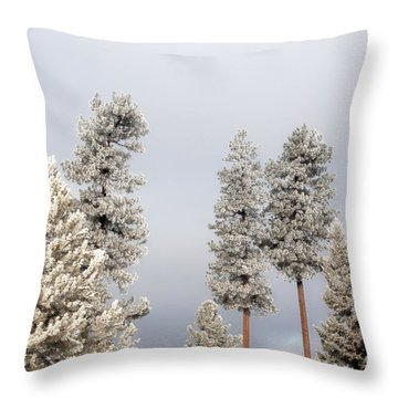 A Frosty Morning 2 Throw Pillow by Janie Johnson