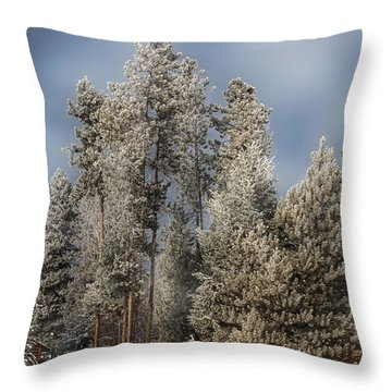 A Frosty Winter Morning Throw Pillow by Janie Johnson
