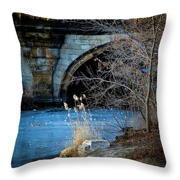 A Frozen Corner In Central Park Throw Pillow