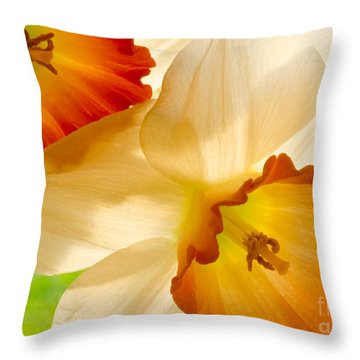 A Full Frame Of Daffy's Throw Pillow
