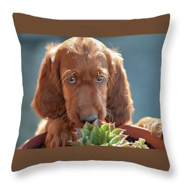 A Gardener Throw Pillow