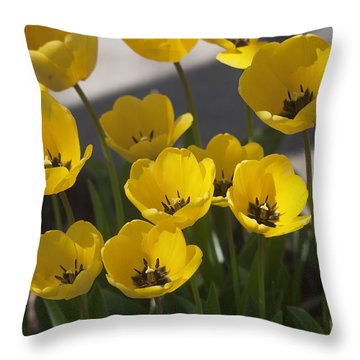 A Gathering Of Tulips Throw Pillow