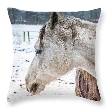 A Girlfriend Of The Horse Amigo Throw Pillow