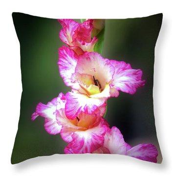 A Gladiolus Throw Pillow