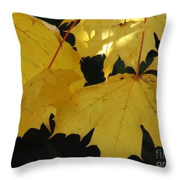 A Glimpse Of Light Throw Pillow by Kim Tran
