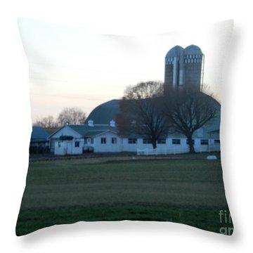 A Glorious Amish Evening Throw Pillow