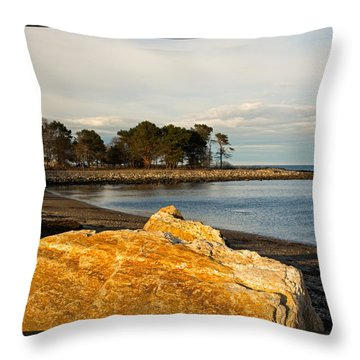Throw Pillow featuring the photograph A Golden Rock On The New Hampshire Seacoast by Nancy De Flon