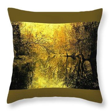 Throw Pillow featuring the photograph A Golden Tribute To Collins Creek by Jim Vance