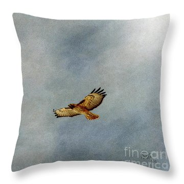 A Good Day To Fly Throw Pillow by Krista-