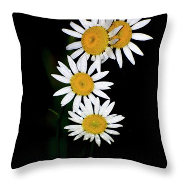 Throw Pillow featuring the digital art A Group Of Wild Daisies by Chris Flees
