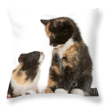 A Guinea For Your Thoughts Throw Pillow
