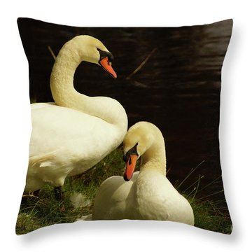 A Handsome Pair Throw Pillow