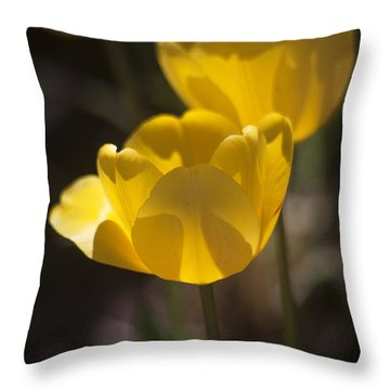 A Happy Spring Moment Throw Pillow