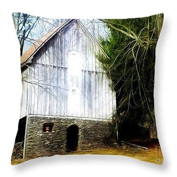 A Hidden Barn In West Chester, Pa Throw Pillow