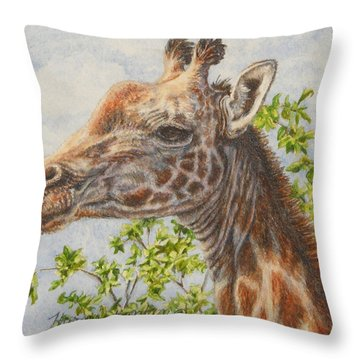 A Higher Point Of View Throw Pillow