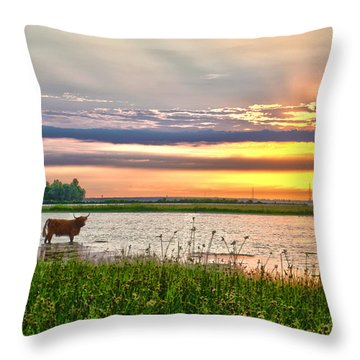 A Highland Cow In The Lowlands Throw Pillow
