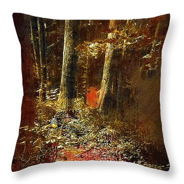A Hiking Trail Throw Pillow